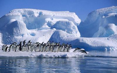Energy Healing: Tip of the Iceberg?