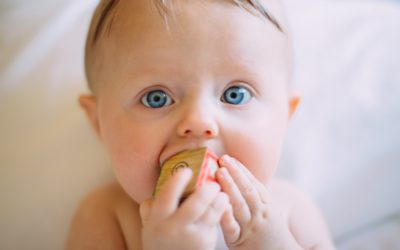Can Babies Teach Adults To Speak?
